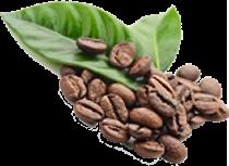 green_coffee210